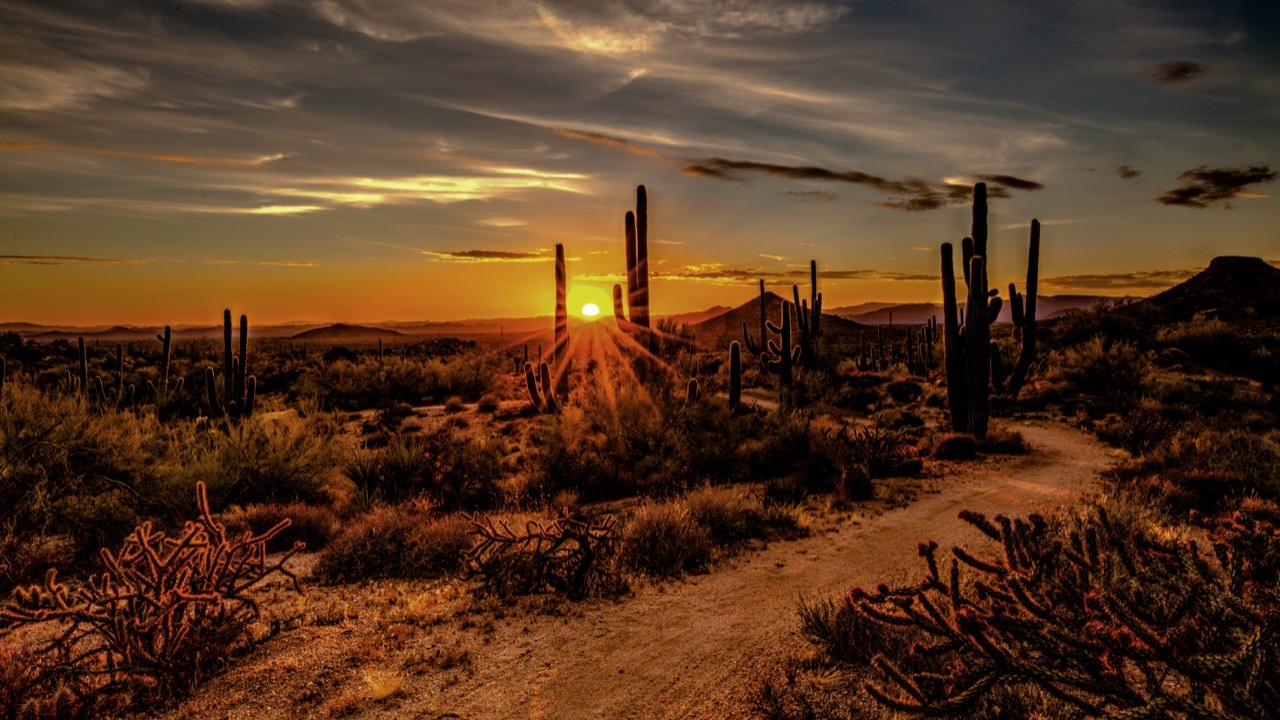 A photograph taken in Arizona, for Scottsdale Digital Marketing