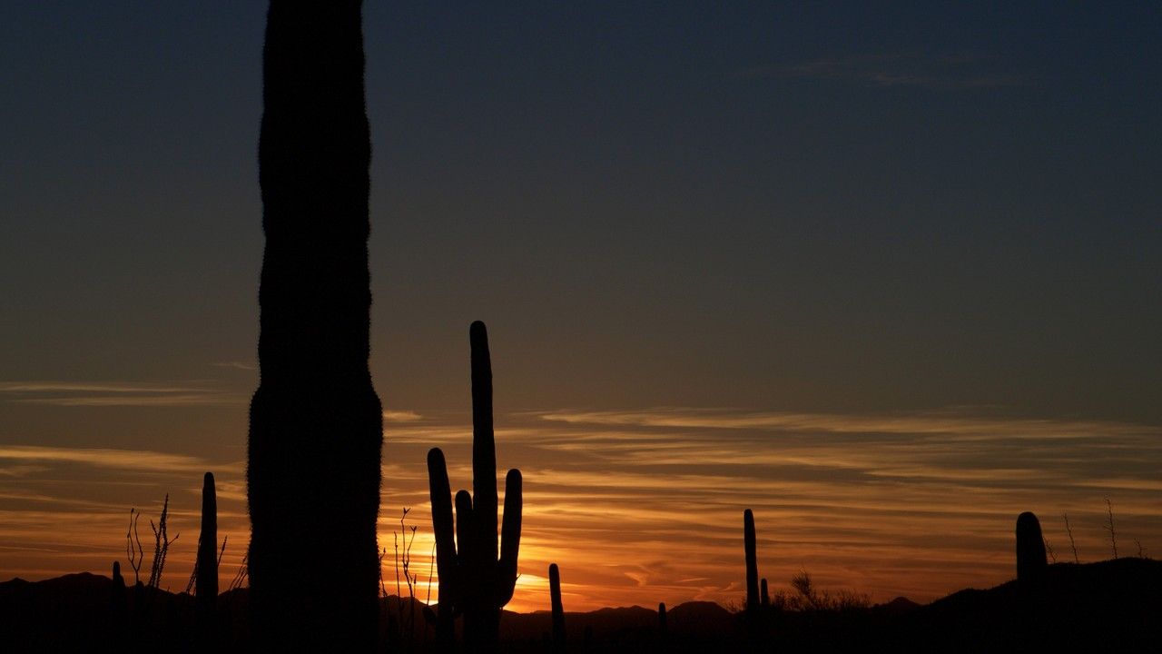 A photograph taken in Arizona, for Tucson Digital Marketing